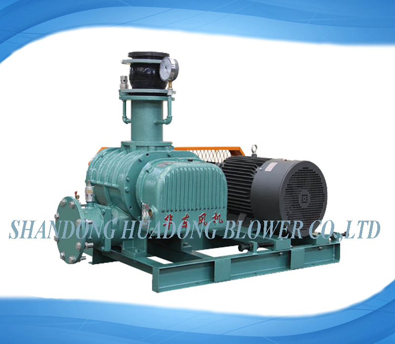 HDSR-V series roots vacuum pump
